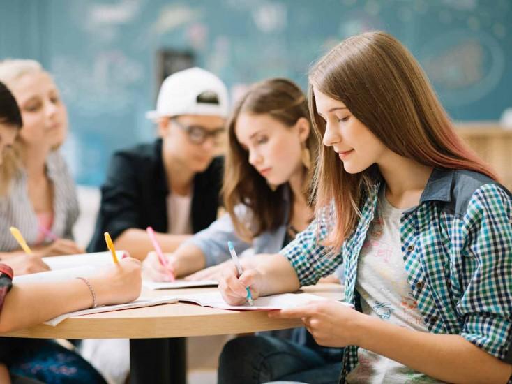 Servicio de Apoyo Psicopedagógico y Orientación al Estudiante (SAPOE)