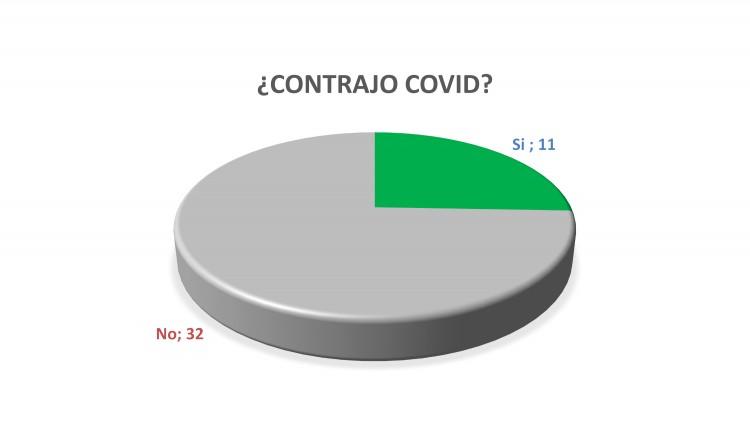 Gráfico N°5
