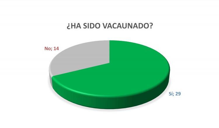Gráfico N°6