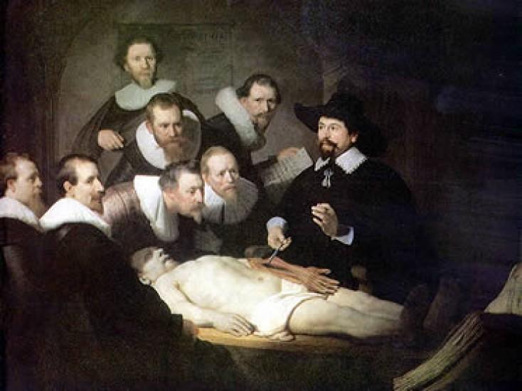 Anatomía Normal, General y Especial